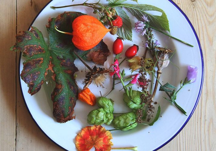 Autumn plate 2