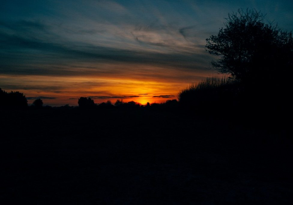 Golden hour (7)