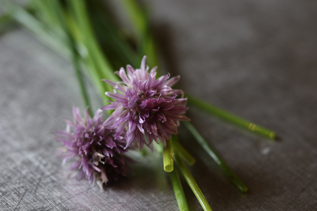 Texture Tuesday - chives original