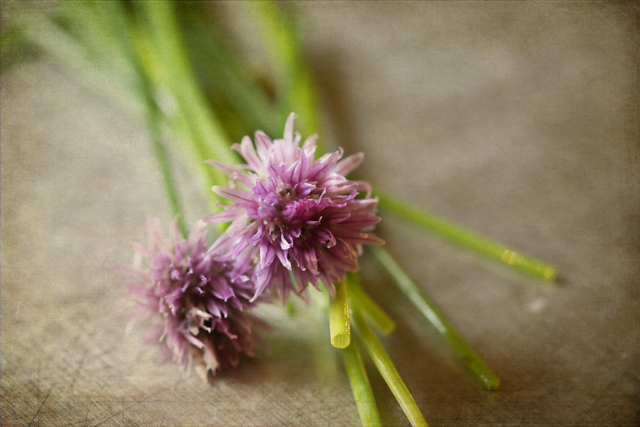 Texture Tuesday - chives small