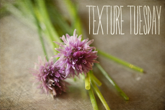 Texture Tuesday - chives with heading