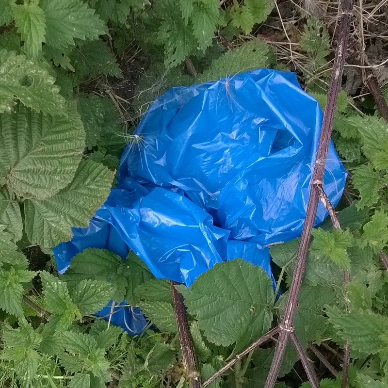 Verge rubbish (18)