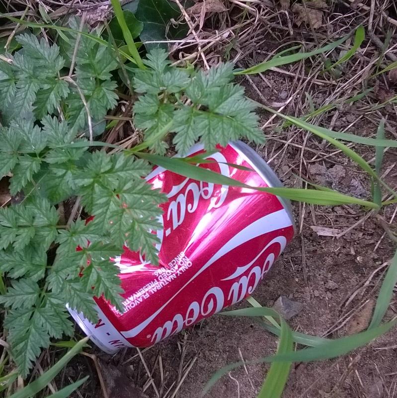 Verge rubbish (19)