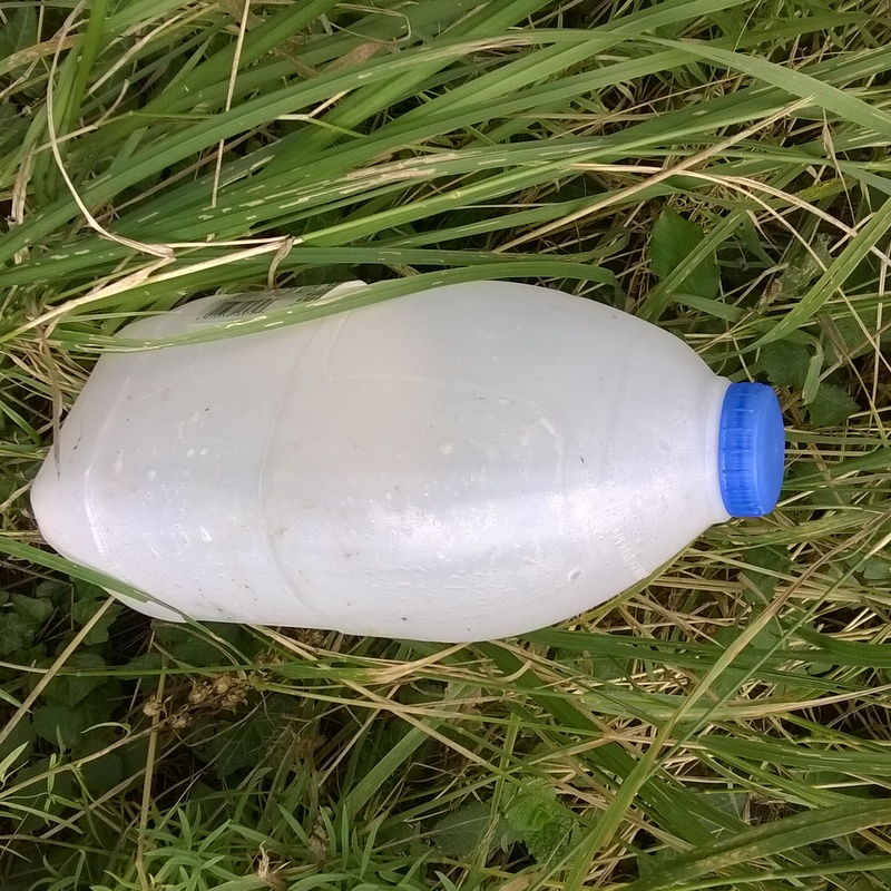 Verge rubbish (24)