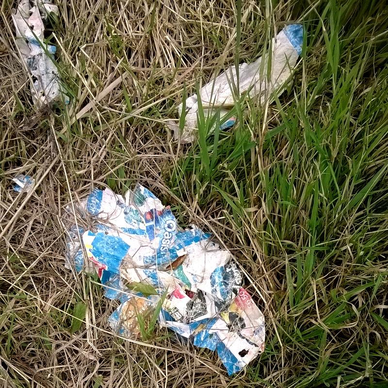 Verge rubbish (26)