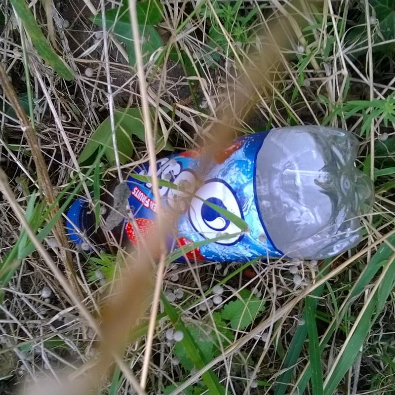 Verge rubbish (4)