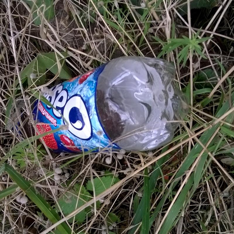 Verge rubbish (5)