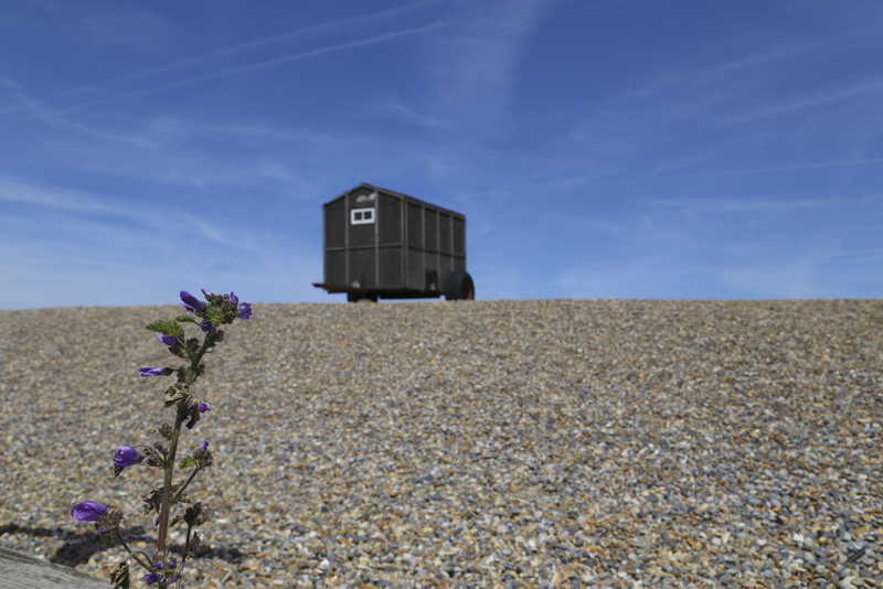 Weybourne coffee break (6)-001