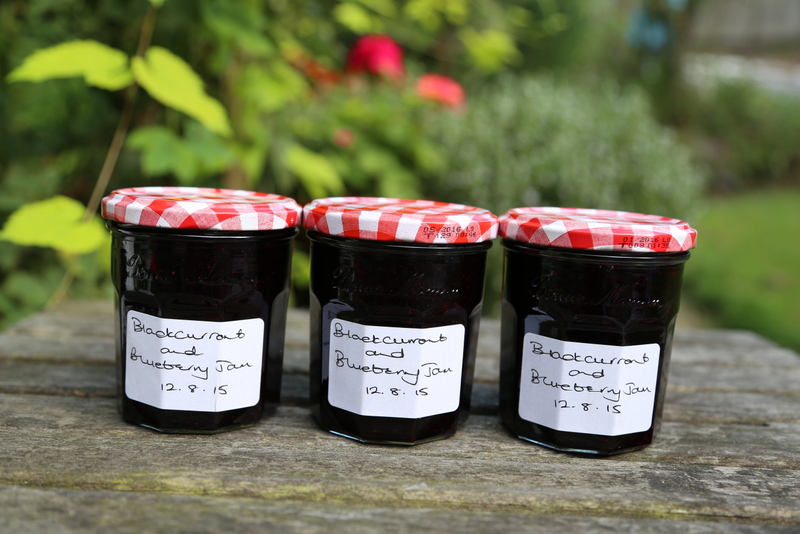 Blackcurrant and blueberry jam (18)