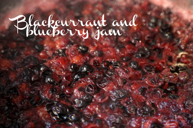 Blackcurrant and blueberry jam (2)
