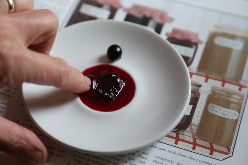 Blackcurrant and blueberry jam (9)