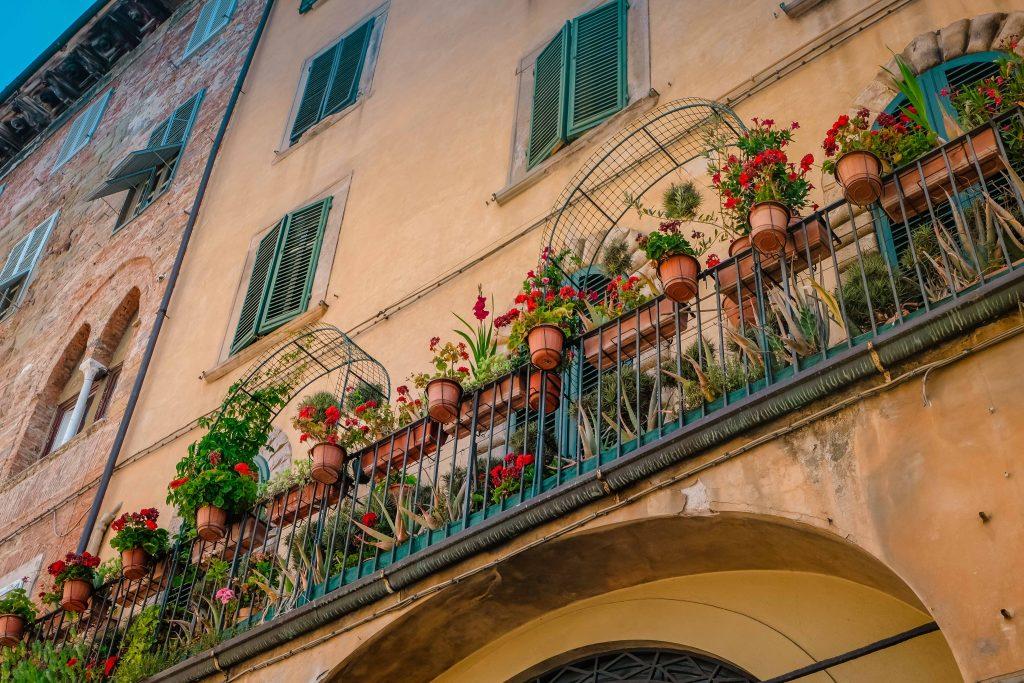 Lovely Lucca (56)